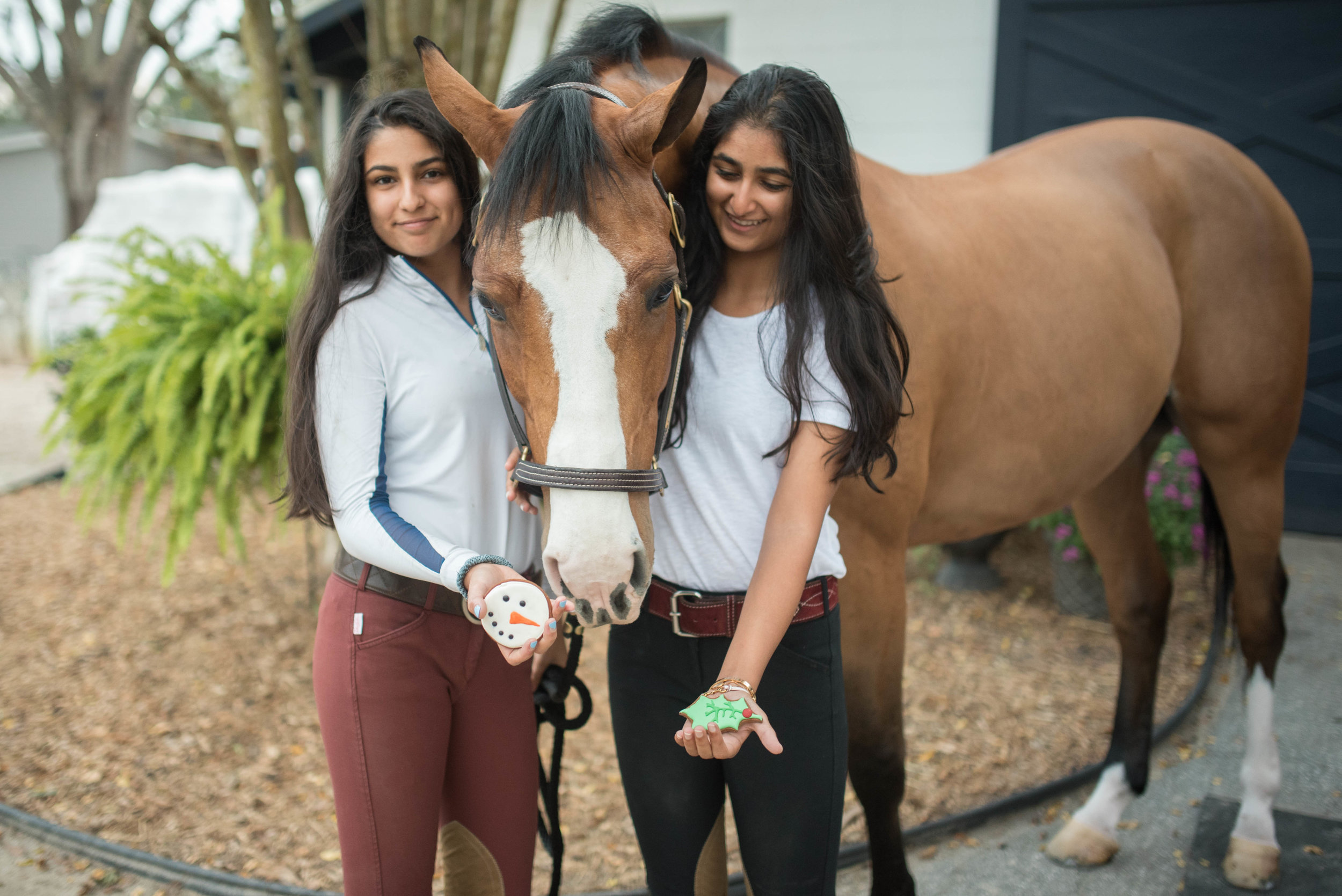Thank you to my adorable models (Left to Right)Raina, Fetch, Isha and Parker (pictured above)