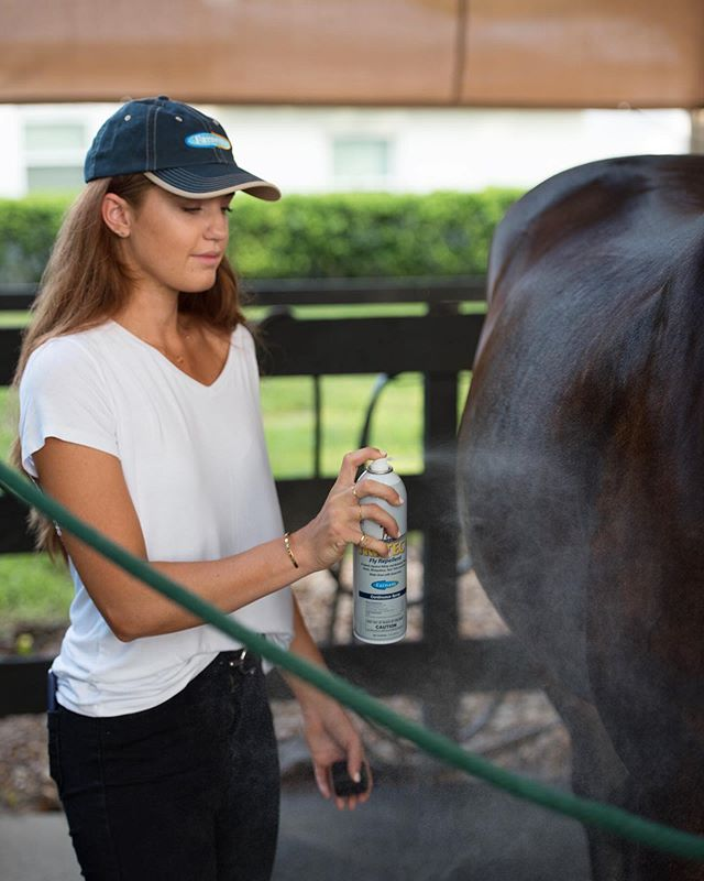 "#ad These Florida summers don't mess around! I always forget how bad the bugs get for my poor ponies. I put together a blog post all about how I combat bugs and create a ""No Fly Zone"" with my favorite @farnamhorse products! #FarnamNoFlyZone #linkinbio #sponsored"