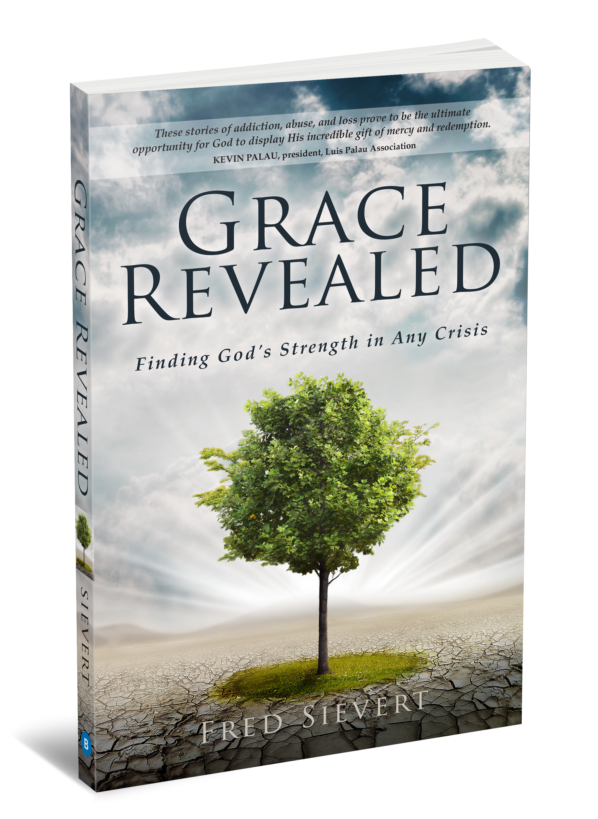 Grace Revealed 3D Cover.png