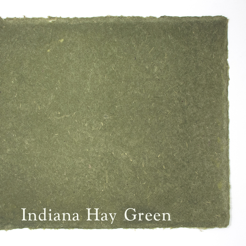 Indiana hay  is a multi-grass fiber and is harvested from an organic hay field using regenerative practices. The sheets are internally sized and come a natural green.