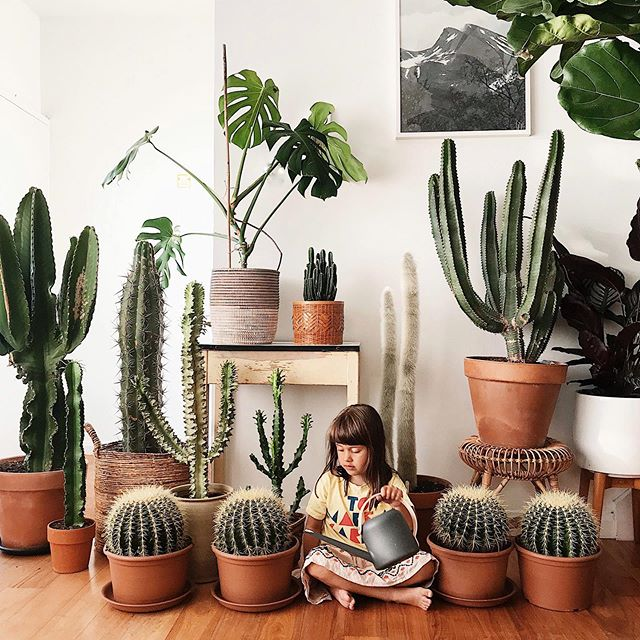 So proud with how much these guys have grown over the summer! 👧🏻🌵