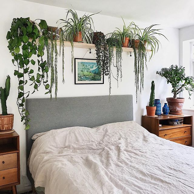 It's ok to go to bed before the kids right? 😴💚🌵🌿