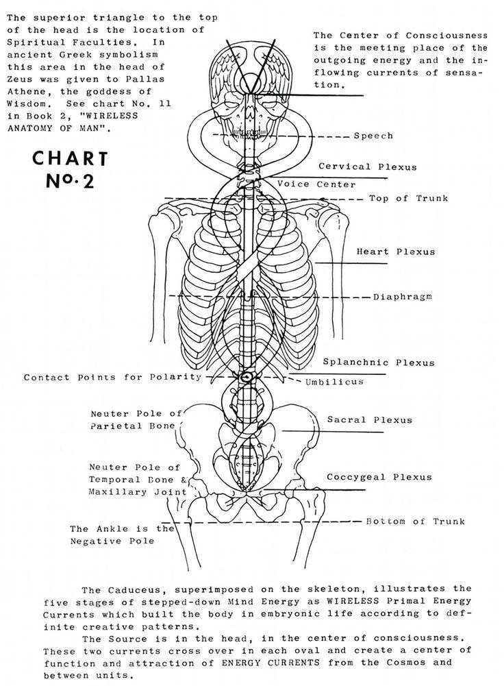 Polarity Therapy Volume 1, Book 1, Chart 02.jpeg