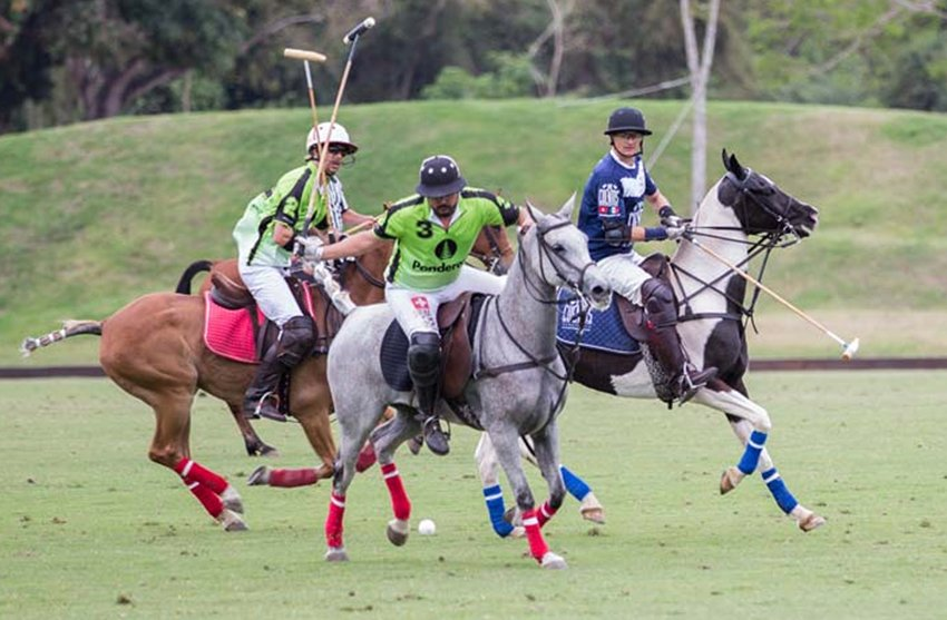 MEXICO NEWS DAILY - Play the Sport of Kings in Laid Bank San Pancho     Photo credit: Mexico News Daily