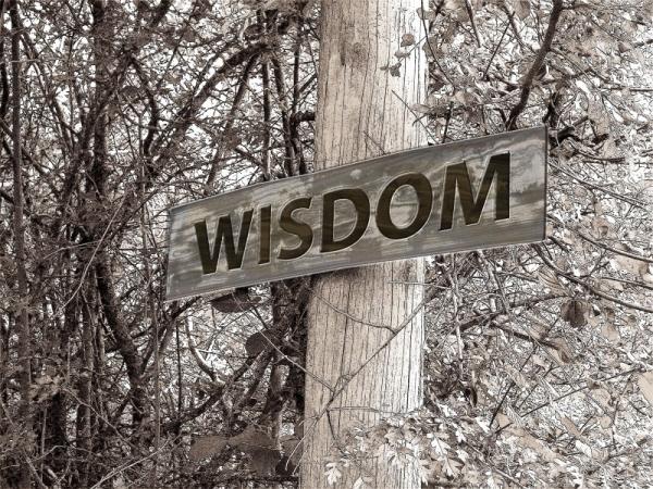 directory-away-wisdom-education-experience.jpg