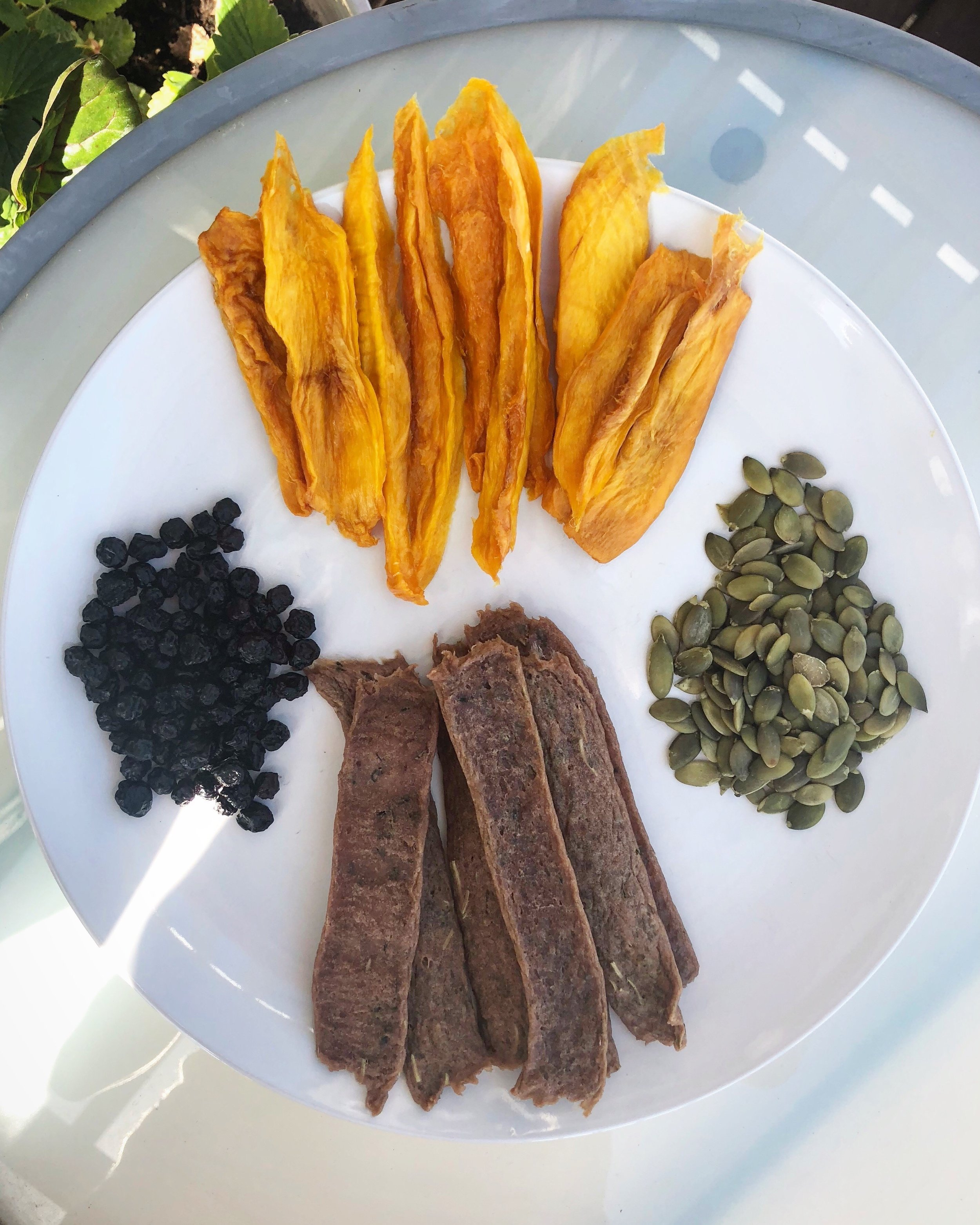 I combined my rosemary-thyme turkey jerky with some dried mango (also made in my dehydrator!), dried blueberries, and pumpkin seeds for a delicious meal!
