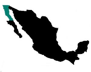 Baja Map.jpg