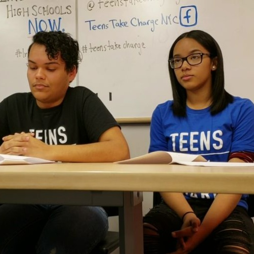 'Mr. Mayor, we cannot afford to wait.' Teen group says New York City diversity plan doesn't move fast enough.   Chalkbeat, February 15, 2019