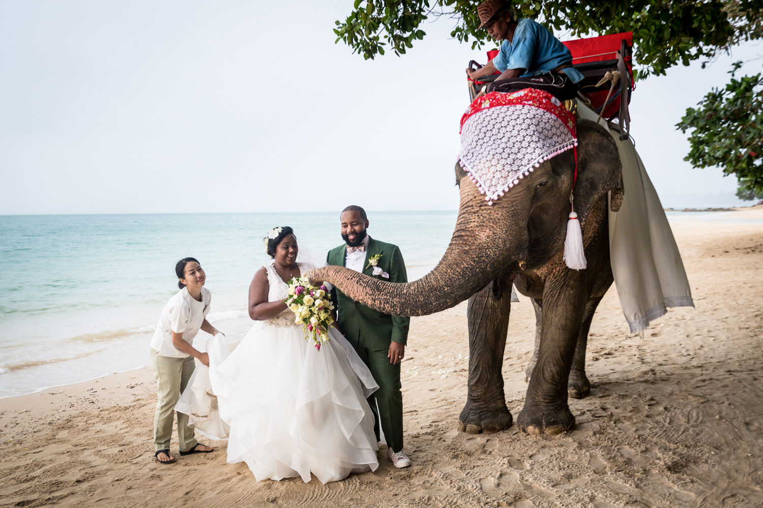 Bride and groom on Thailand beach with elephant
