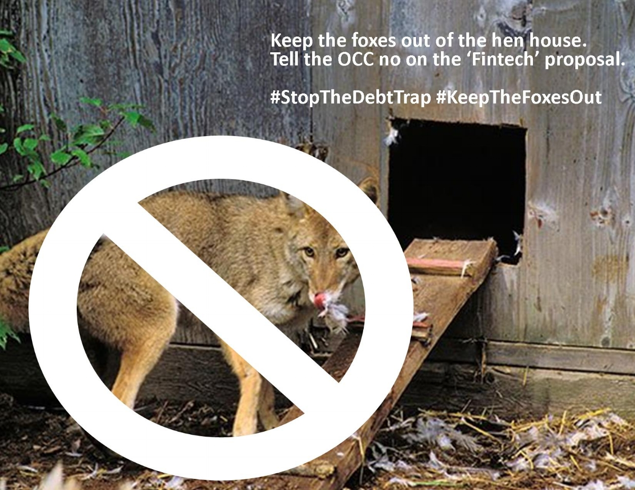 #KeepTheFoxesOut
