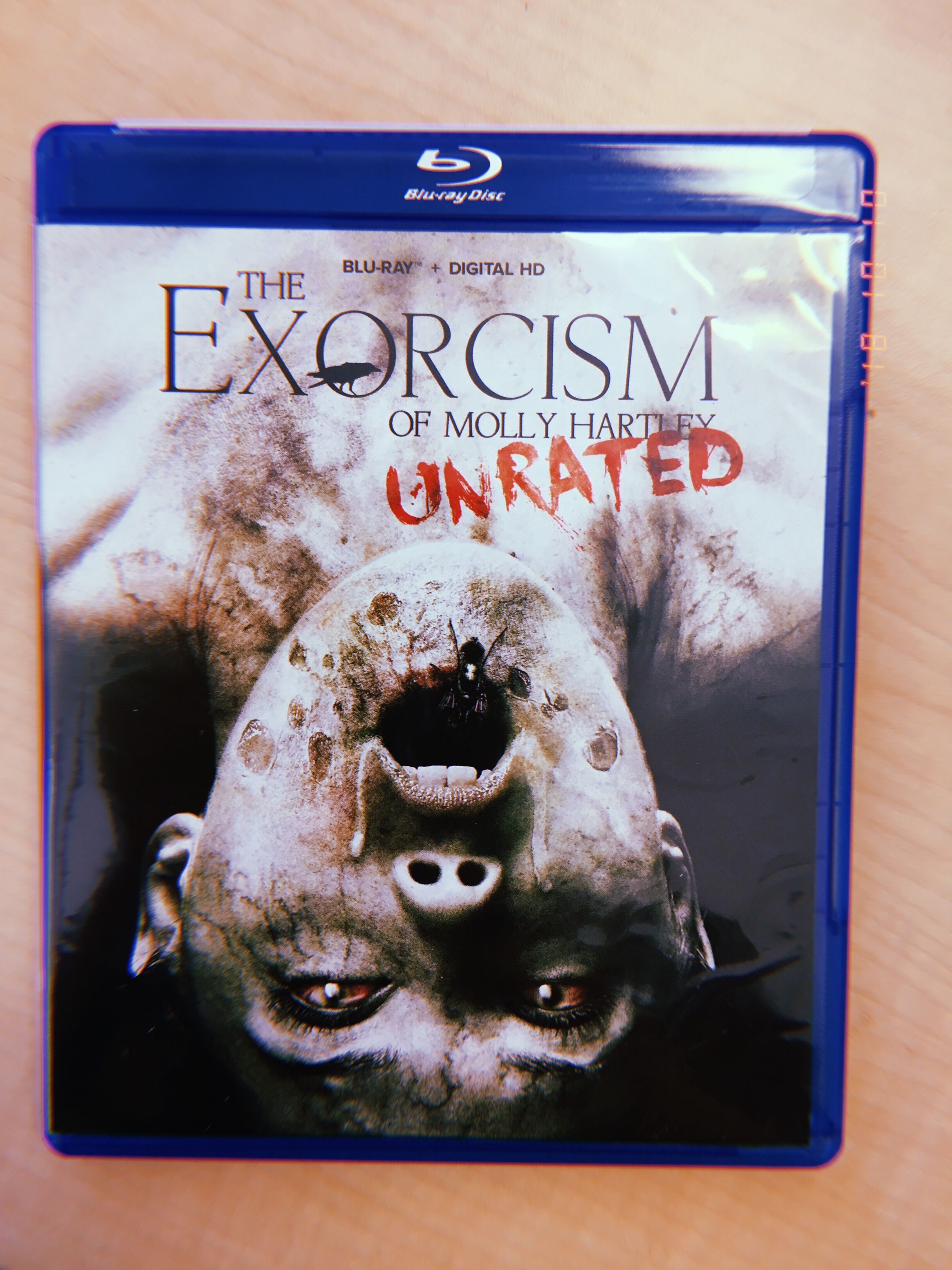 The Exorcism of Molly Hartley (2015) - the sequel to The Haunting of Molly Hartley (2008)