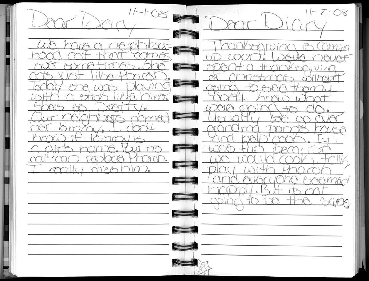 diary-entry-033.jpg