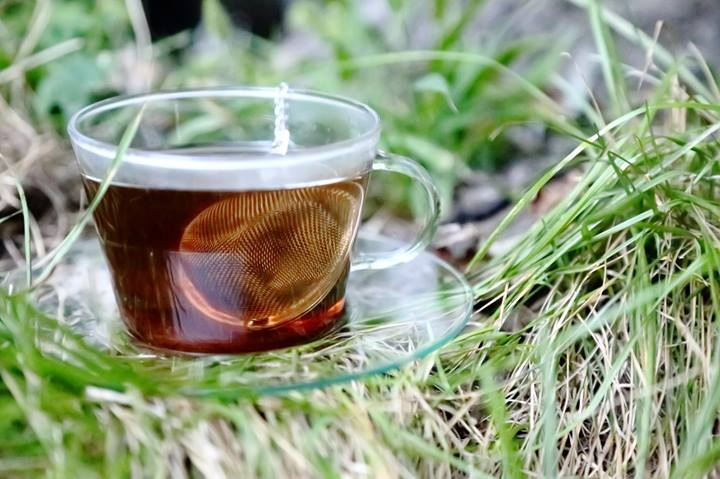 cup in grass.jpg