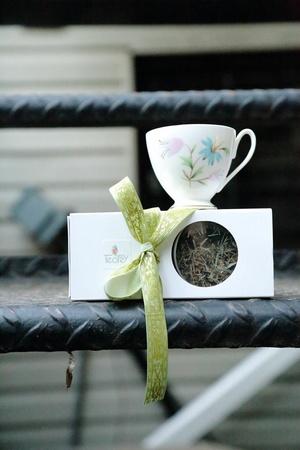 tea2go w cup.jpg