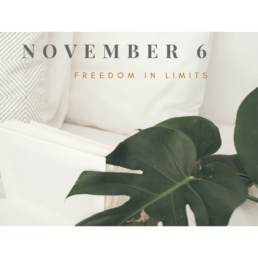 Copy of november6.png