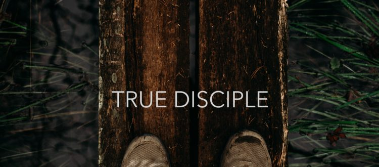 true-disciple-750x330.jpeg