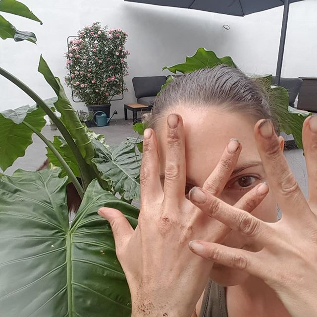 For me, there is something utterly relaxing  in being with plants...and I also love digging in the earth after having spent time behind my computer....so that's what I did...now cleaning those nails 🙄 #ilovemyplants #nature #happy #love