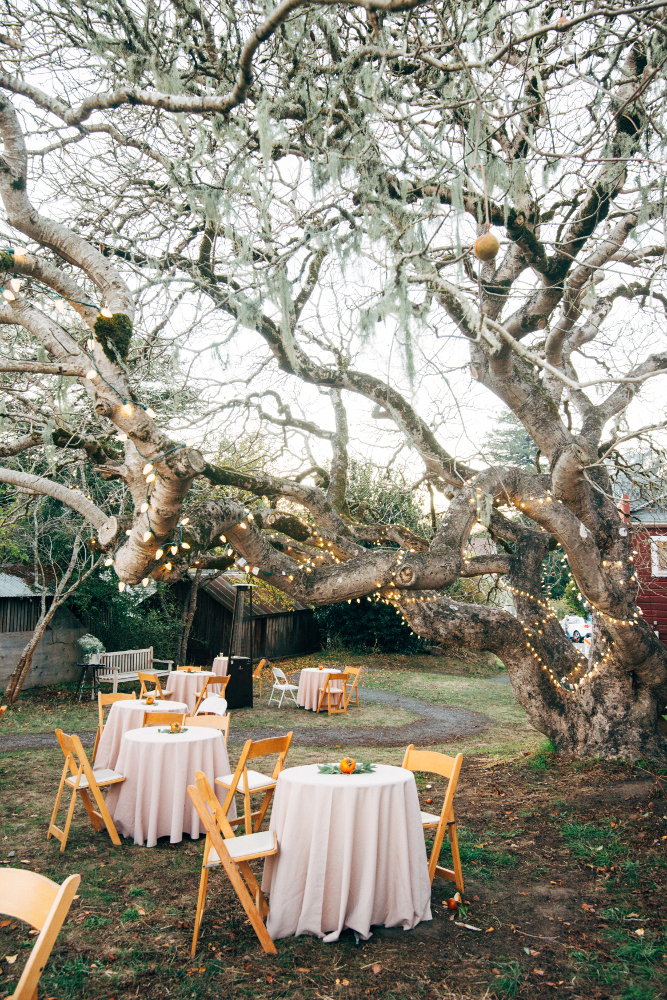 Tables in the Buckeye Lot for a wedding, November 2016. Photo: Julie Pepin.