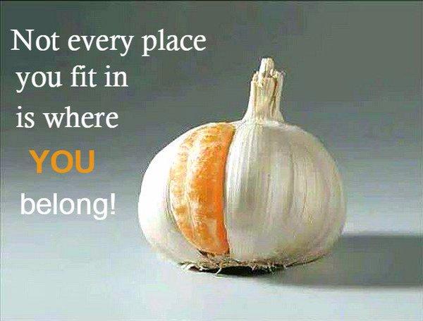 don't just fit but belong.jpg