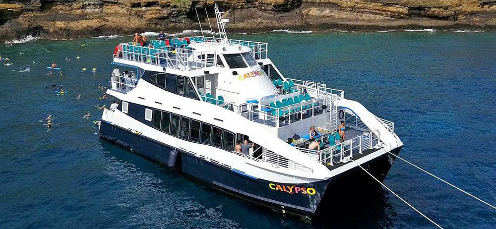 Calypso-Snorkel.jpg