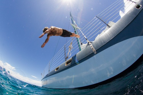 Sail-Maui-Dive.jpg