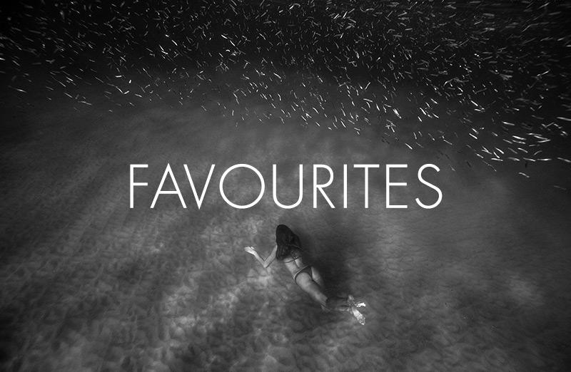 favourites.jpg
