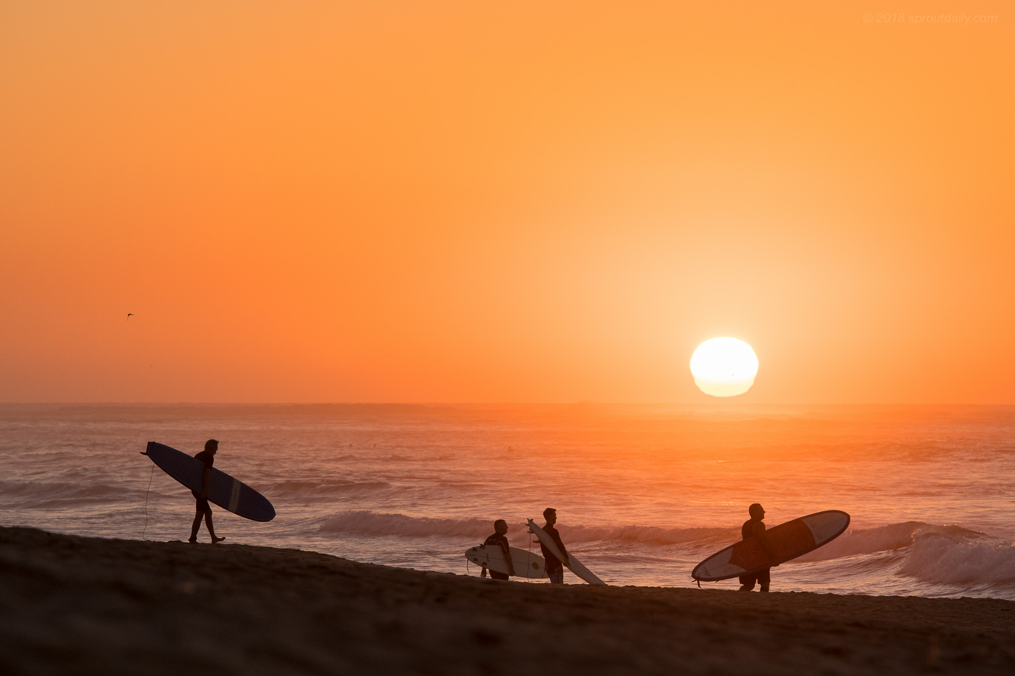 Sunrise Paddle Out