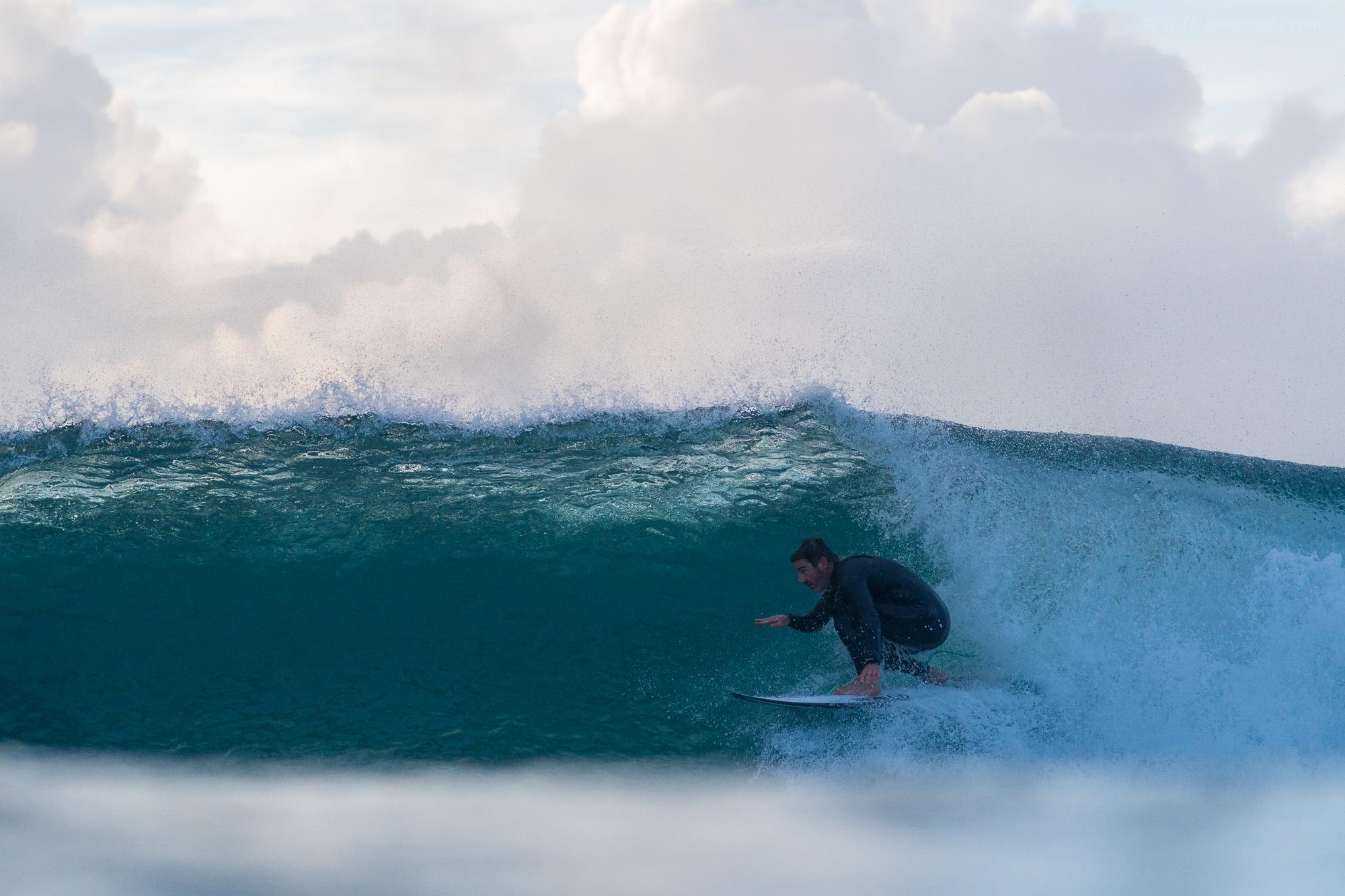 Dave burrowing