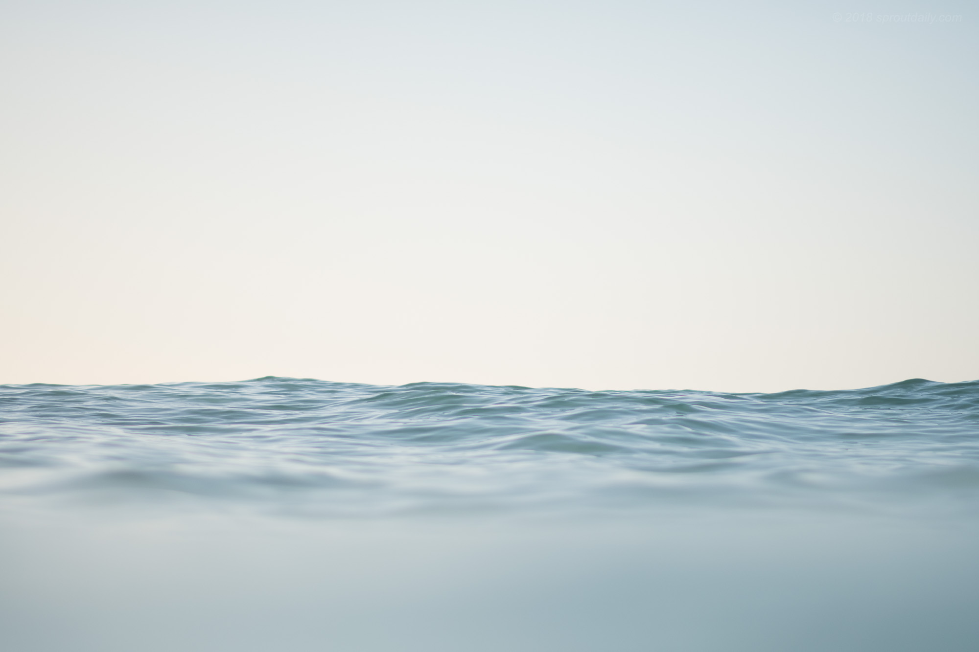 Surface Seas