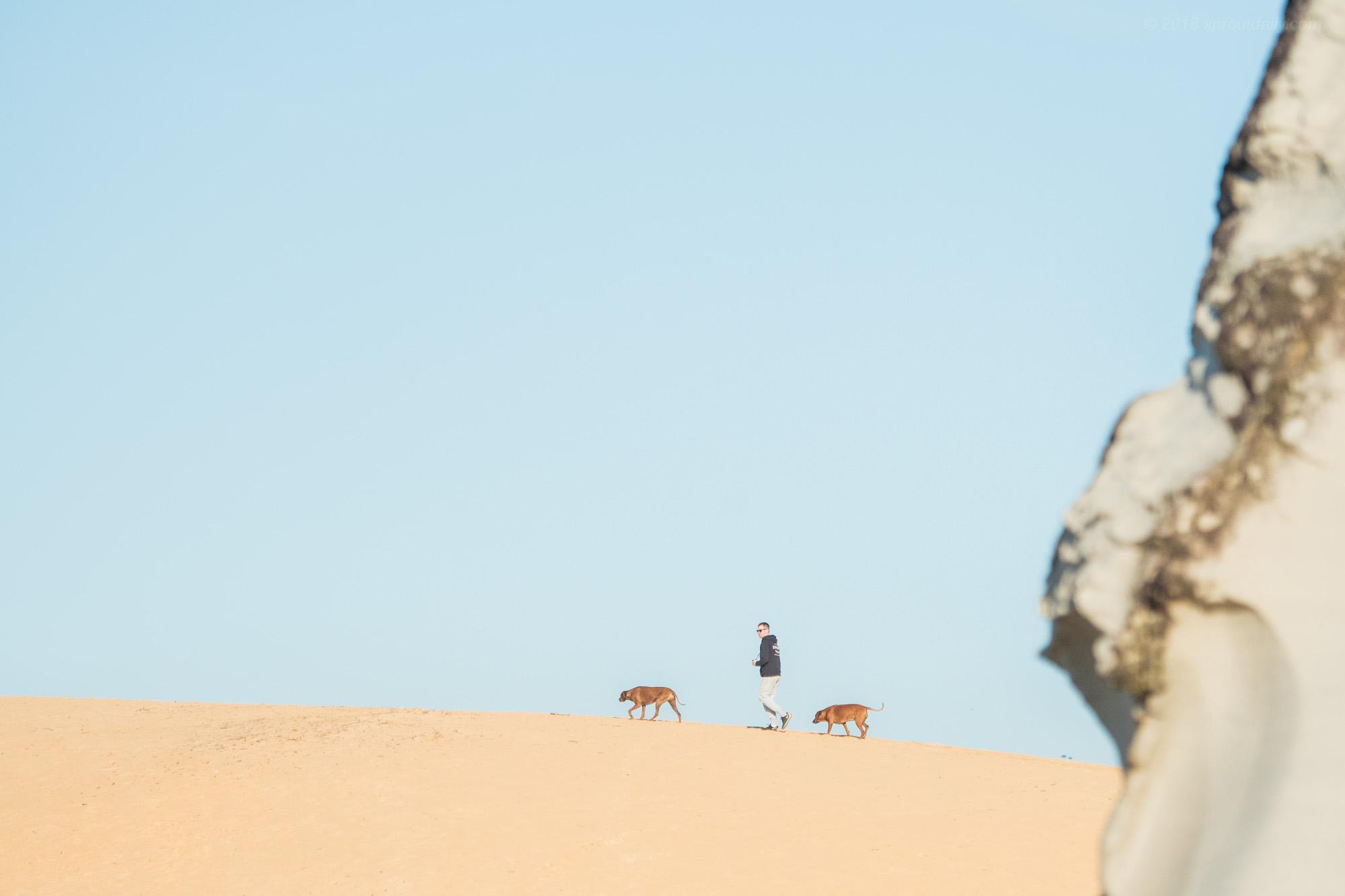 Dune Crew