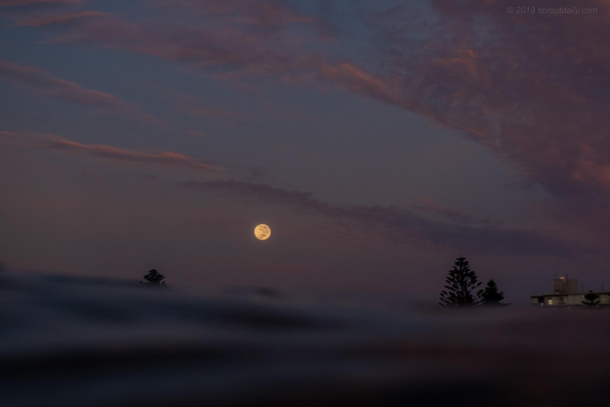 Full Moon Sink