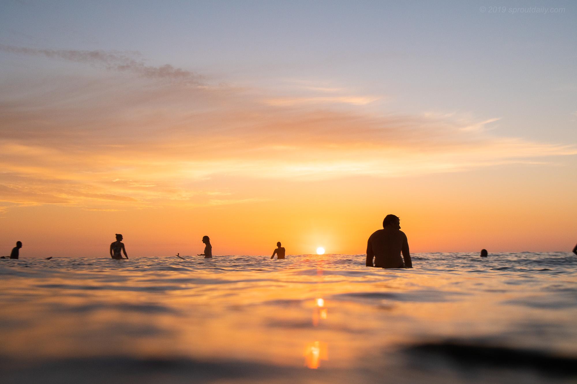 Sunrise Collective