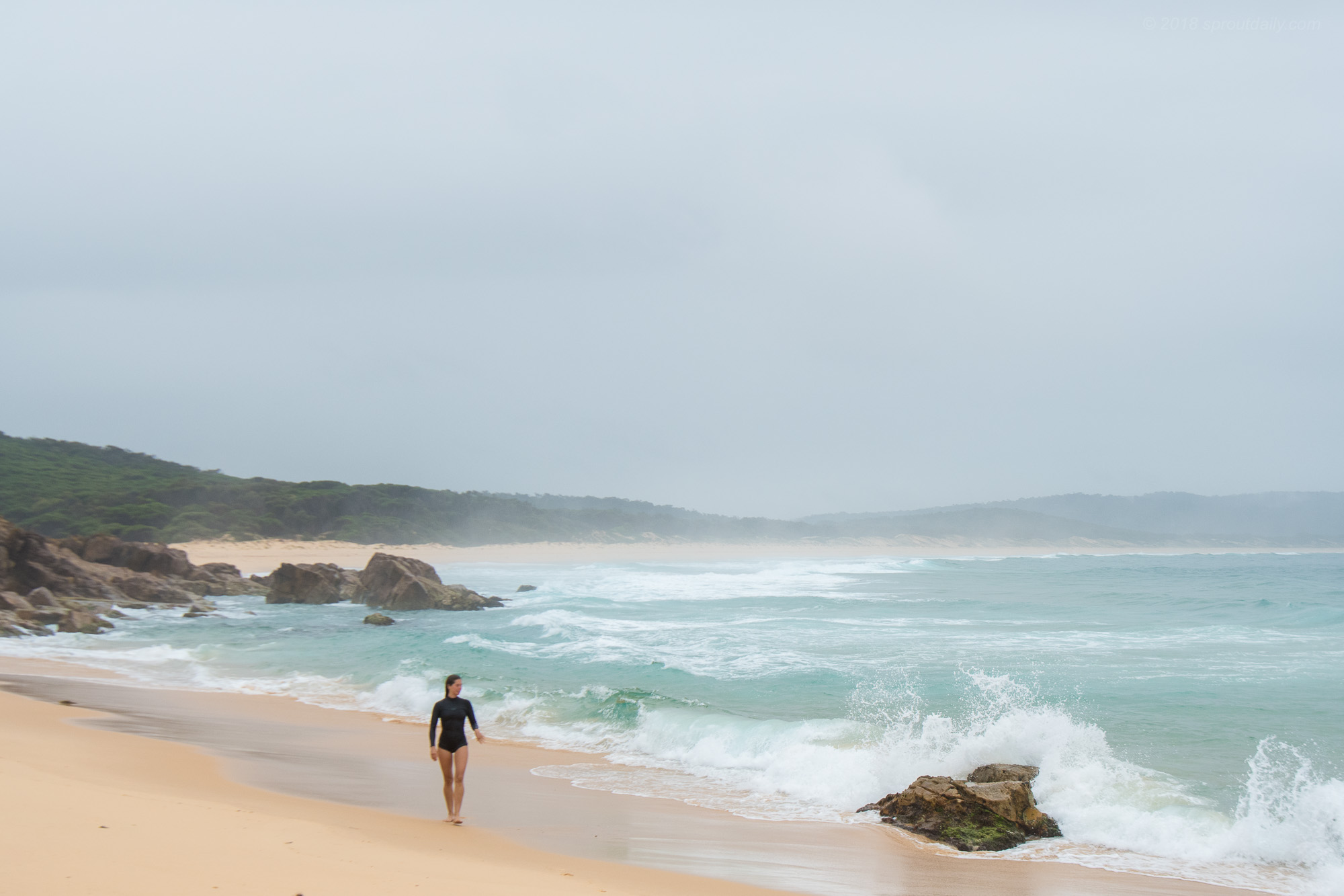 Short Walks on Empty Beaches
