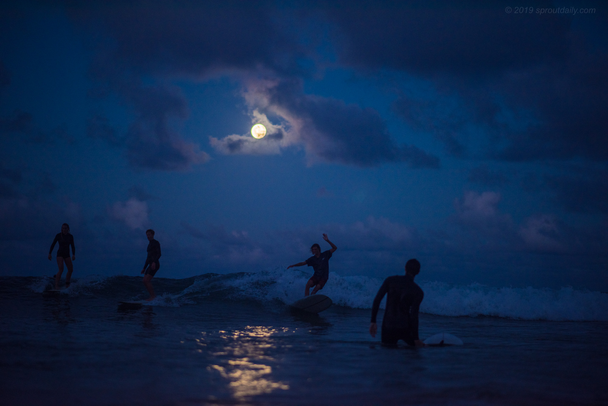 It's a Full Moon Party
