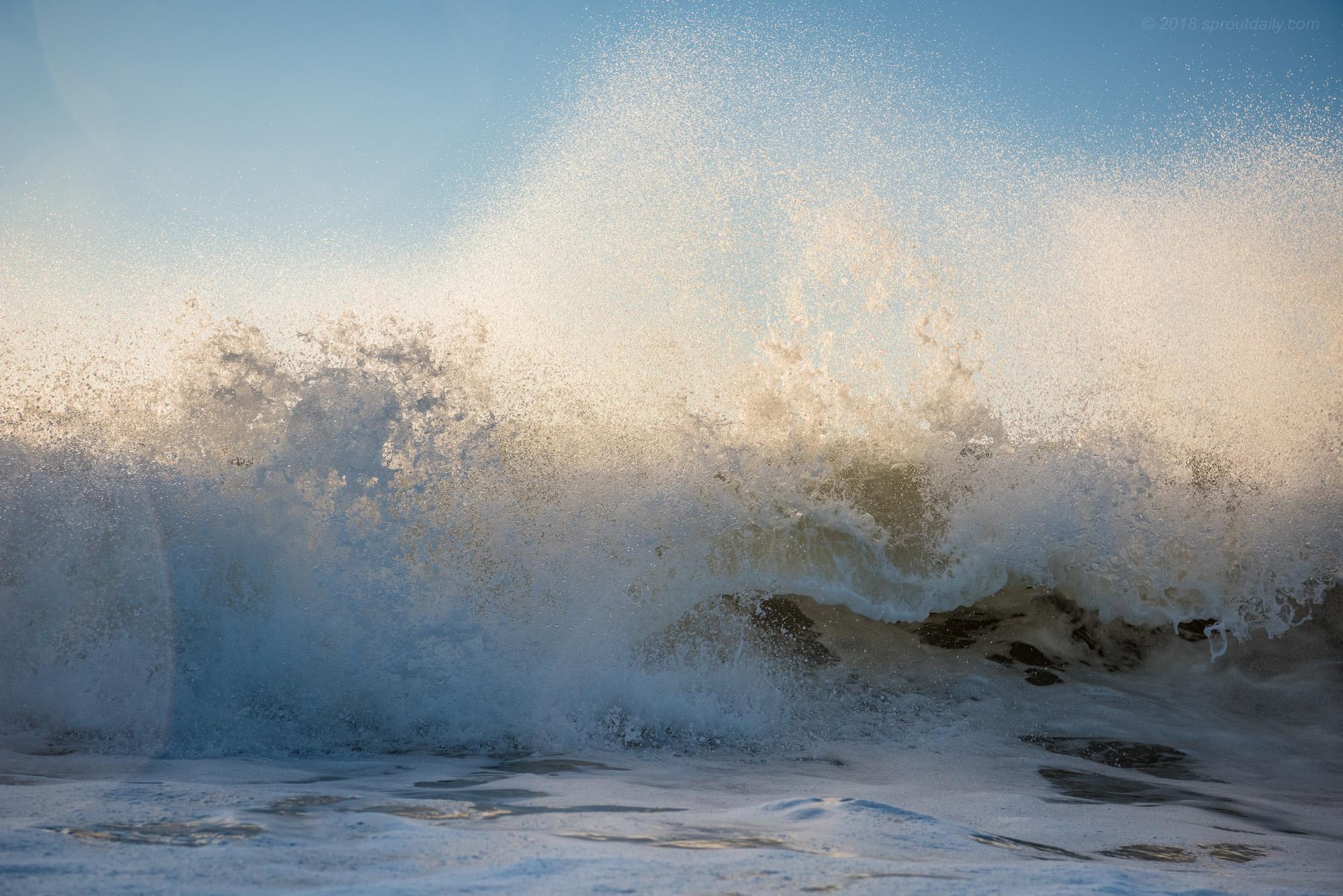 Low Tide Jumble