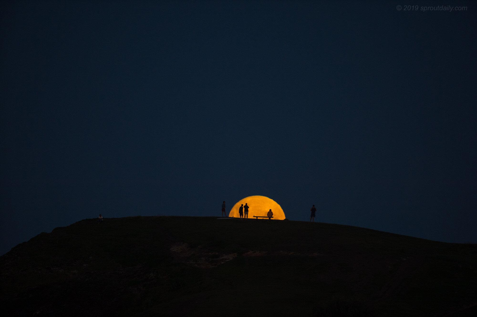 17 Mar - Moonrise Viewing, Crescent Head