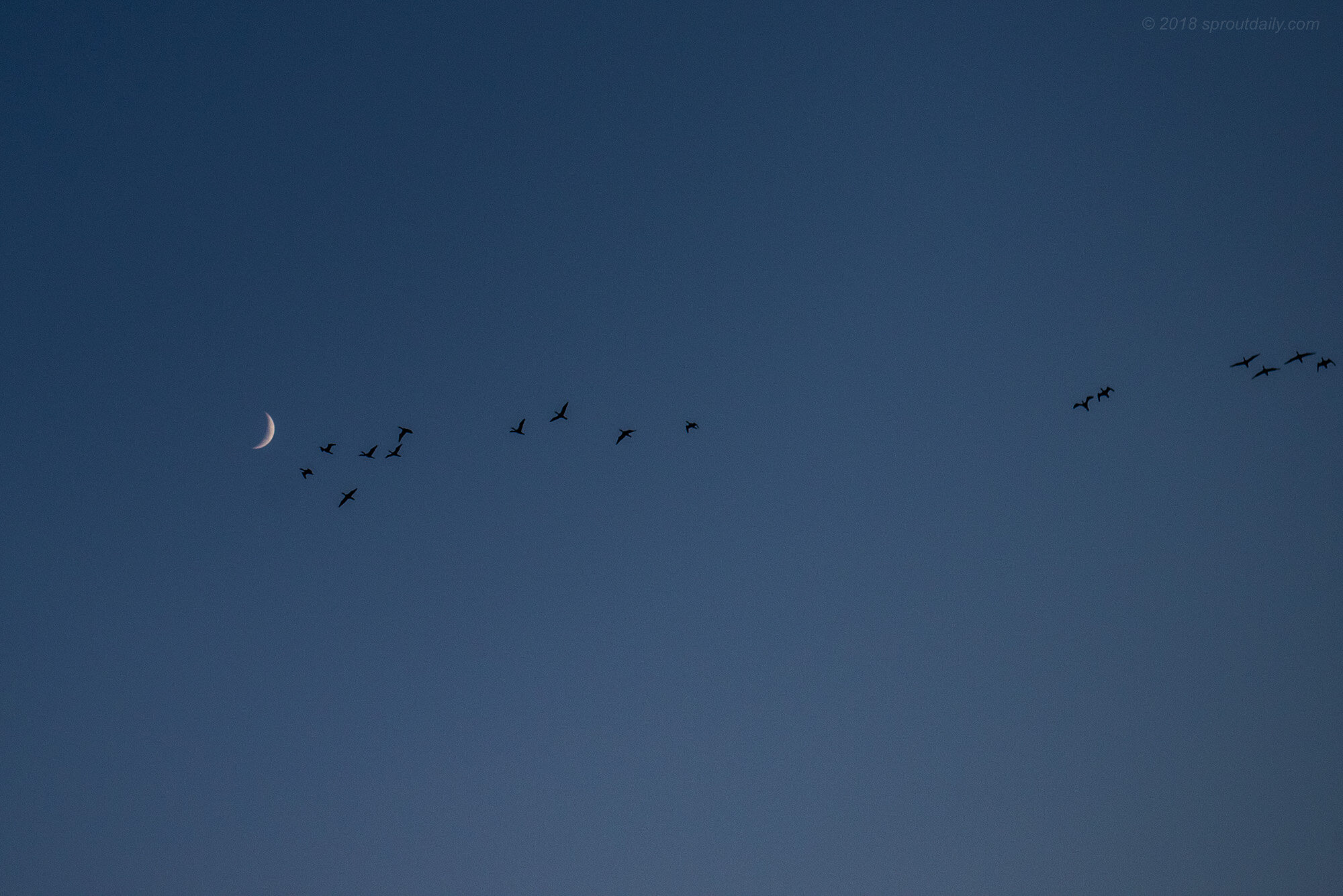 Crescent Flyby