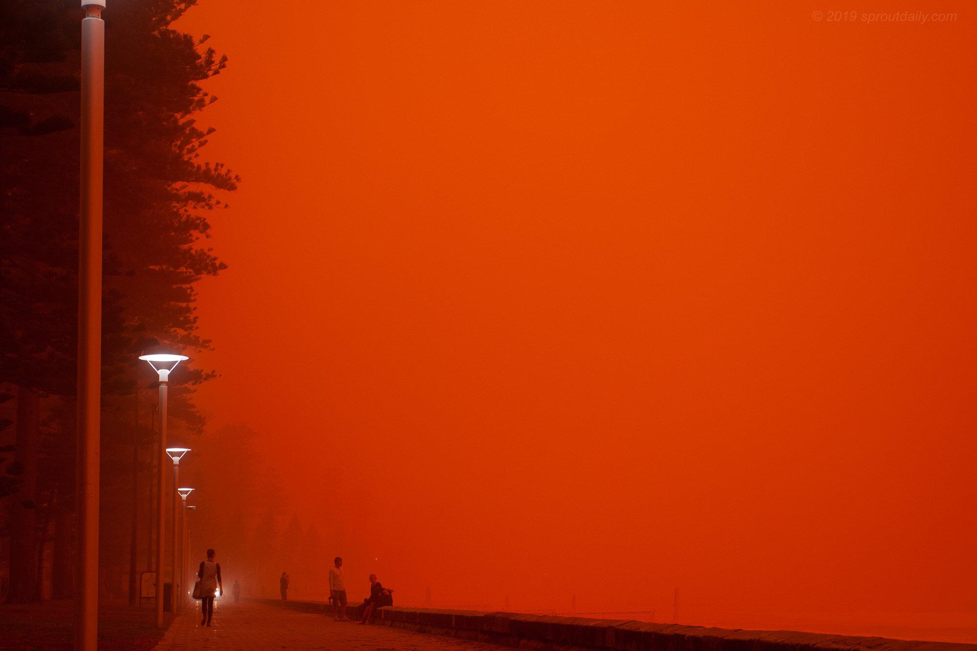 Dust Dawn