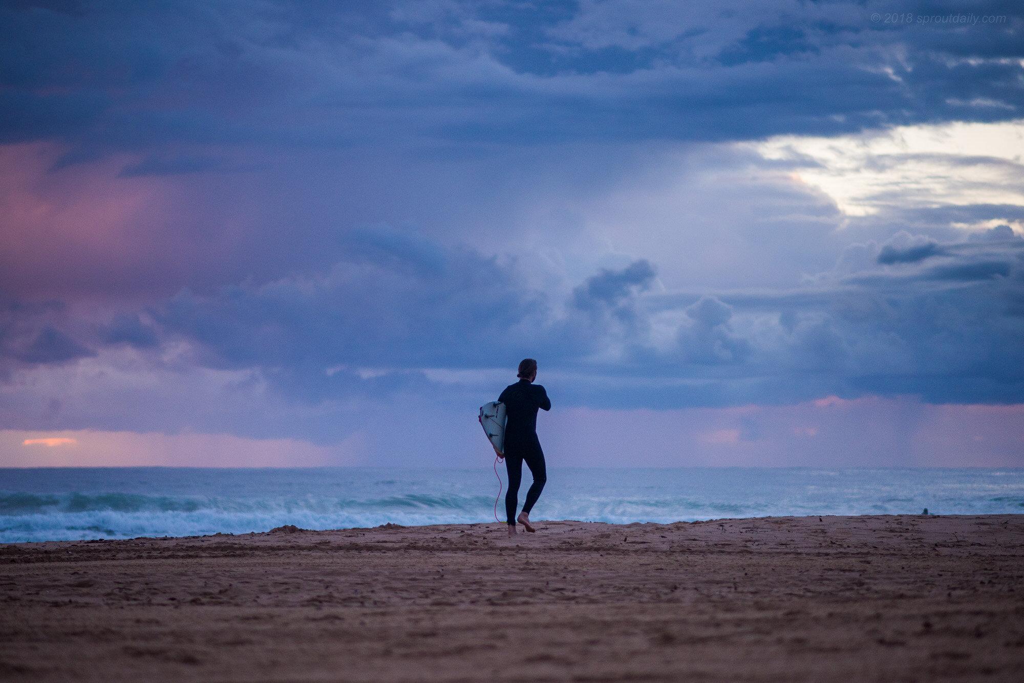 Dawn Search