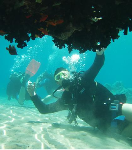Ocean_dive-ledge.jpg
