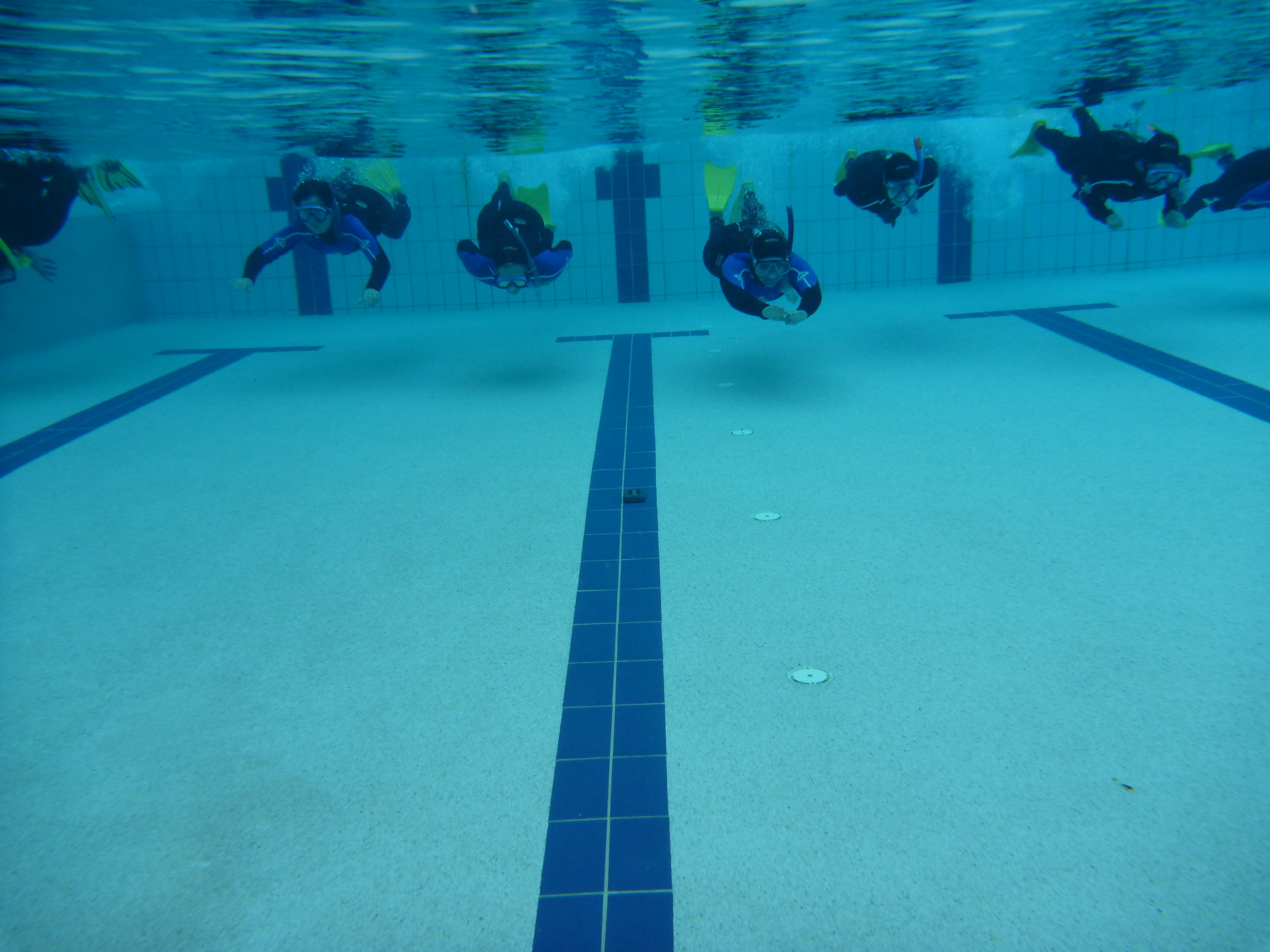 Our Snorkel Safety & Skills program is comprehensive, covering safety issues that most people are unaware of.