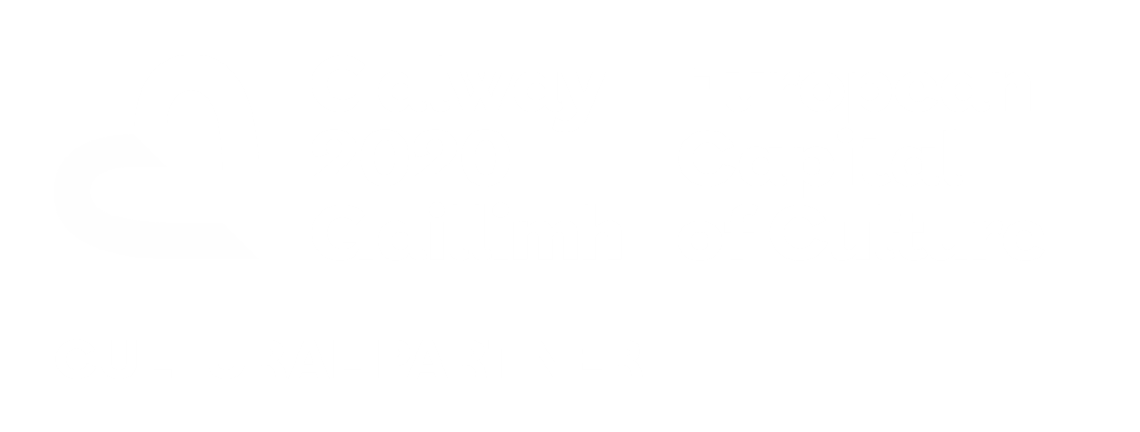 Galway2020_CulturalPartner_White.png