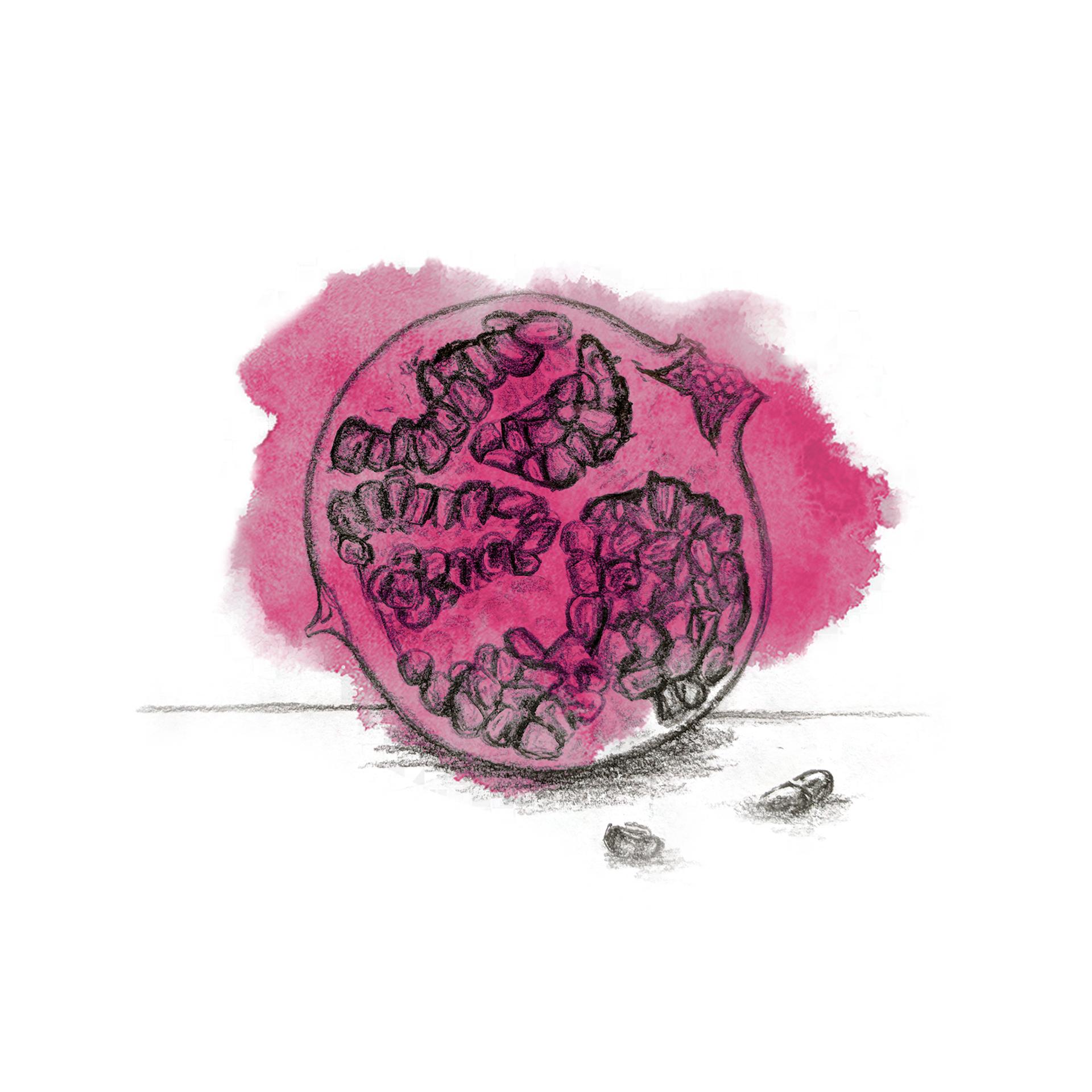 The-Drunken-Butler-Illustrations-Pomegranate.jpg