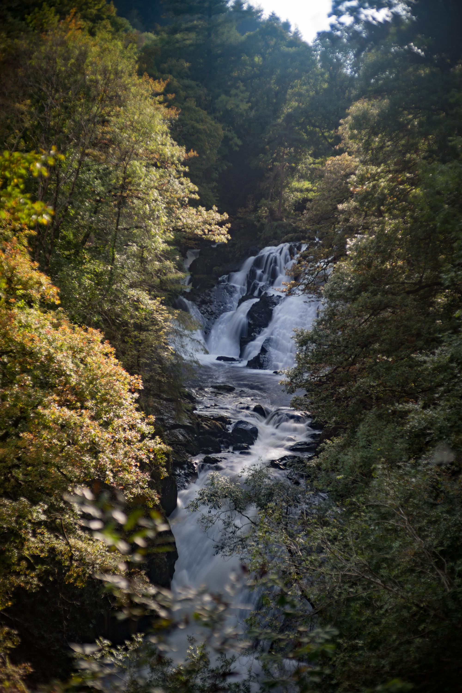 Our mystical destination, Swallow Falls.