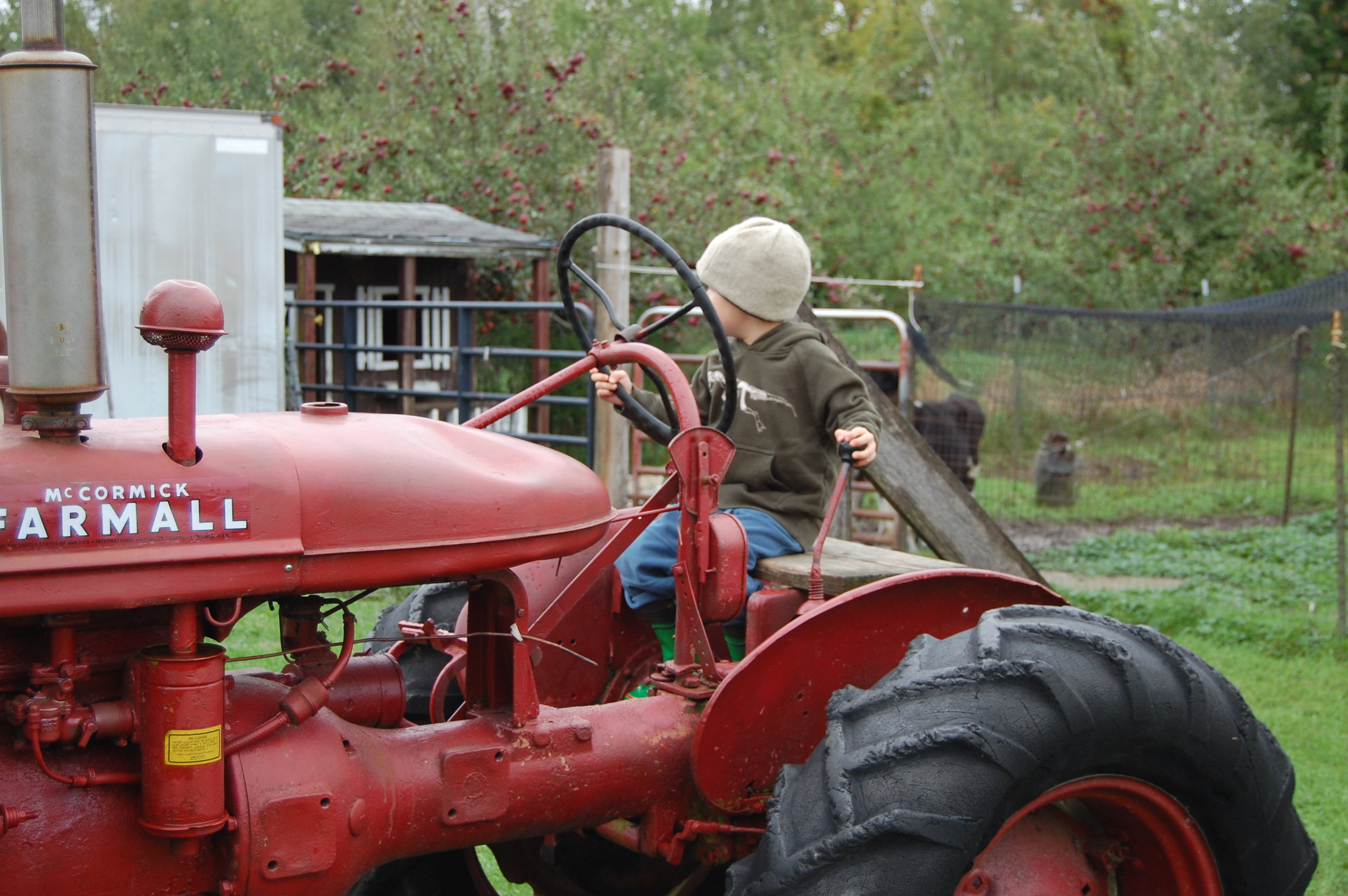 Sitting on a tractor at Allenholm Farm is a fun way to imagine what it's like to be an apple grower.
