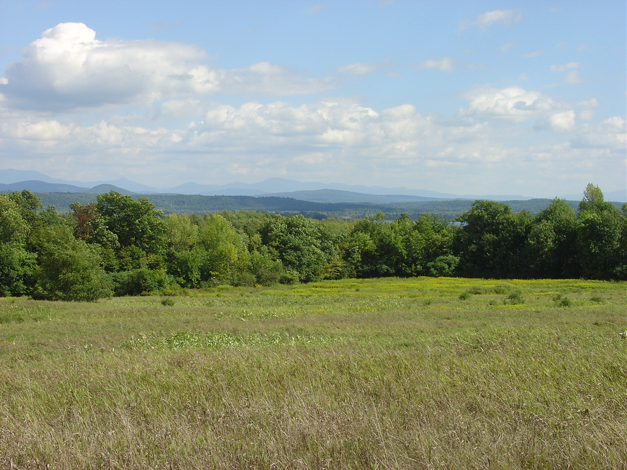 Buermann Hill was conserved by the South Hero Land Trust and the Lake Champlain Land Trust in 2006