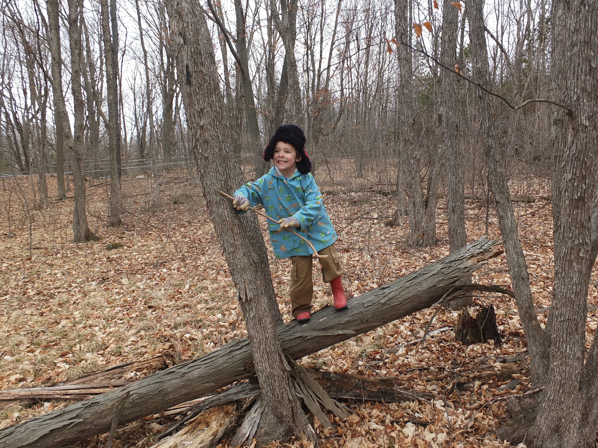 Exploring the woods on Fox Hill at Crescent Bay Farm