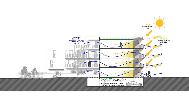 Bélandre-coupeBioClim-collectif-logement-alterlab.jpg
