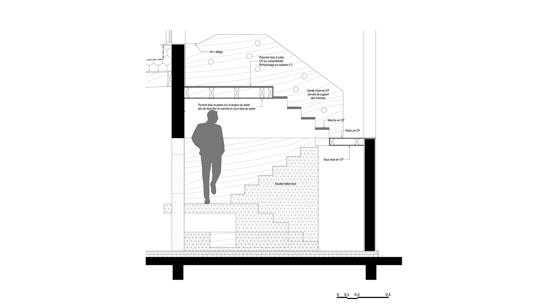 TAMC-coupeDétail-individuel-logement-alterlab.jpg