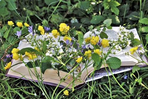 Midsummer Day Celebrations:  Miscellany of music, drama and poetry  (Read more) .  Friday 21st June 2019.